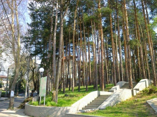 Апартамент във Велинград до парк